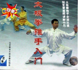 [武术]太极拳推手入门 2VCD 主讲:黄康辉  兴趣艺术 第1张